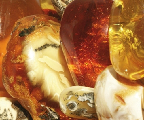 Look into Amber – It's amazing what you'll find!