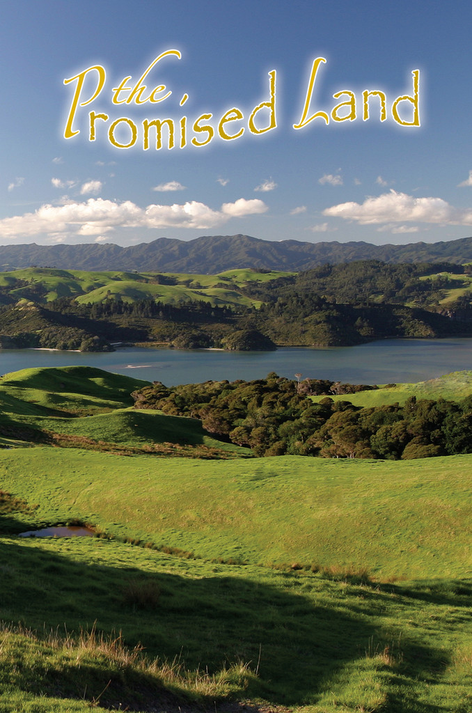 Promised Land - Adult Study Guide