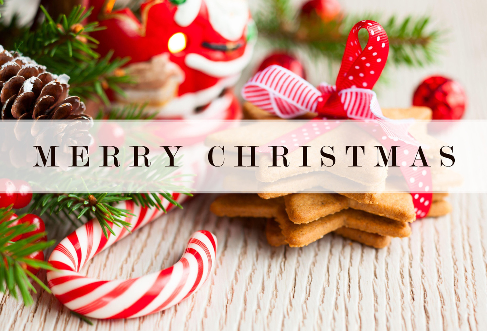 merry christmas postcards pack of 25