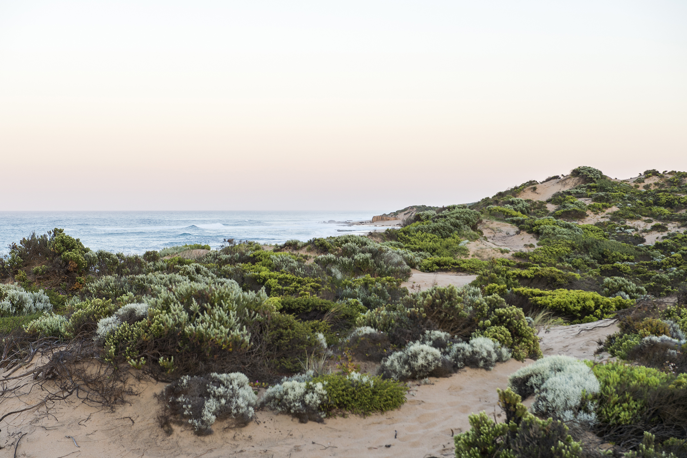 Sand dunes at St Andrews Beach with a beautiful soft pink glow