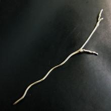 Twig Shawl Stick