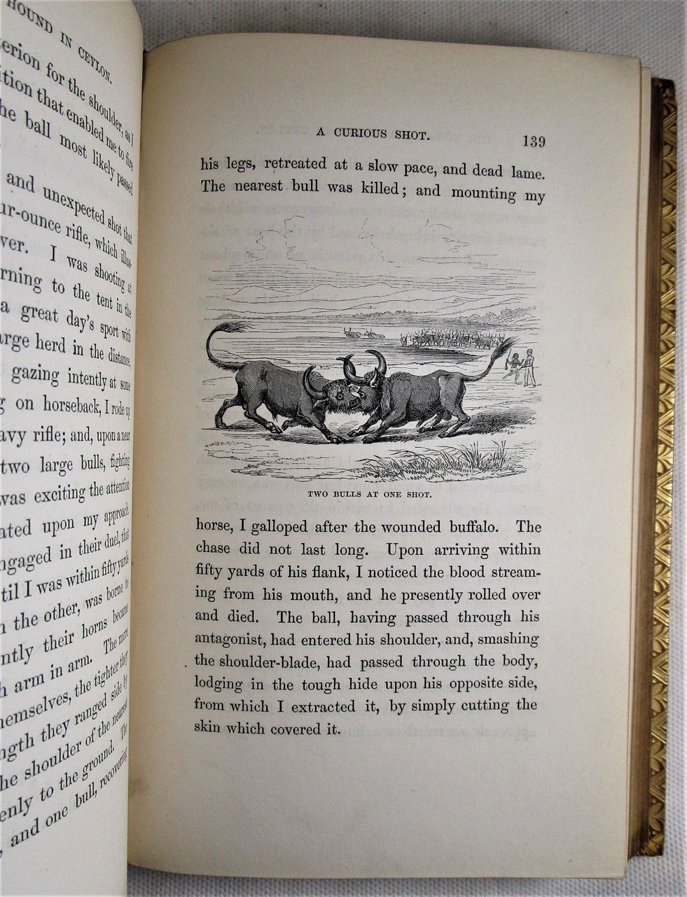 THE RIFLE AND THE HOUND IN CEYLON, by SW Baker - 1854 [1st Ed]