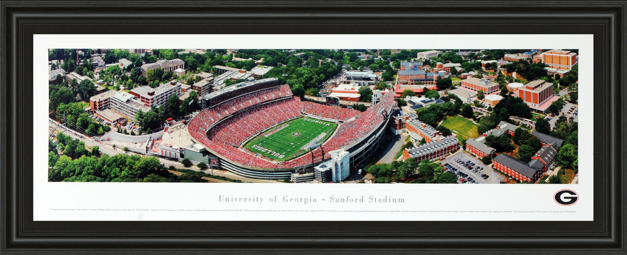 University of Georgia Stadium