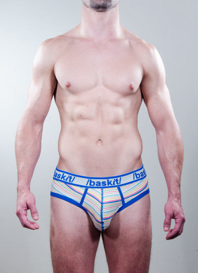 Wild Stripes Brief