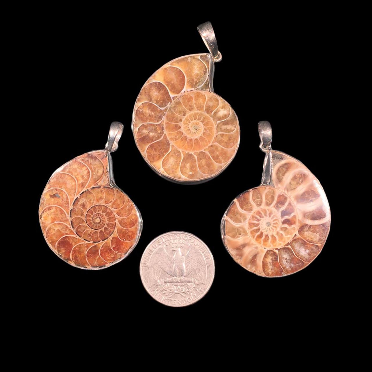 Ammonite pendants in sterling silver aloadofball Images