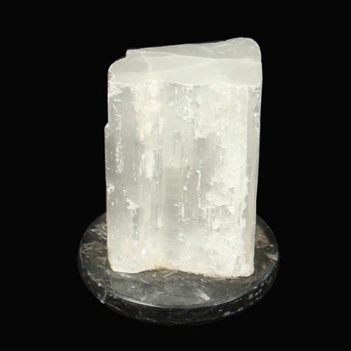 Selenite Fossil Lamp - Med