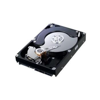 401411CQ200687 Samsung 500GB 7200RPM SATA 3.0 Gbps 3.5 16MB Cache Hard Drive