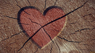 The heartbreak of absconding...