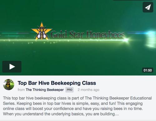 Online Top Bar Beekeeping Class