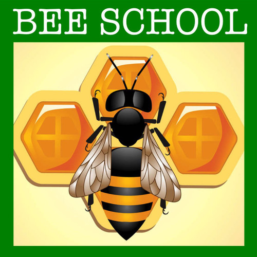 Top Bar Beekeeping Class: Burnsville, NC - November 17 and 18, 2018