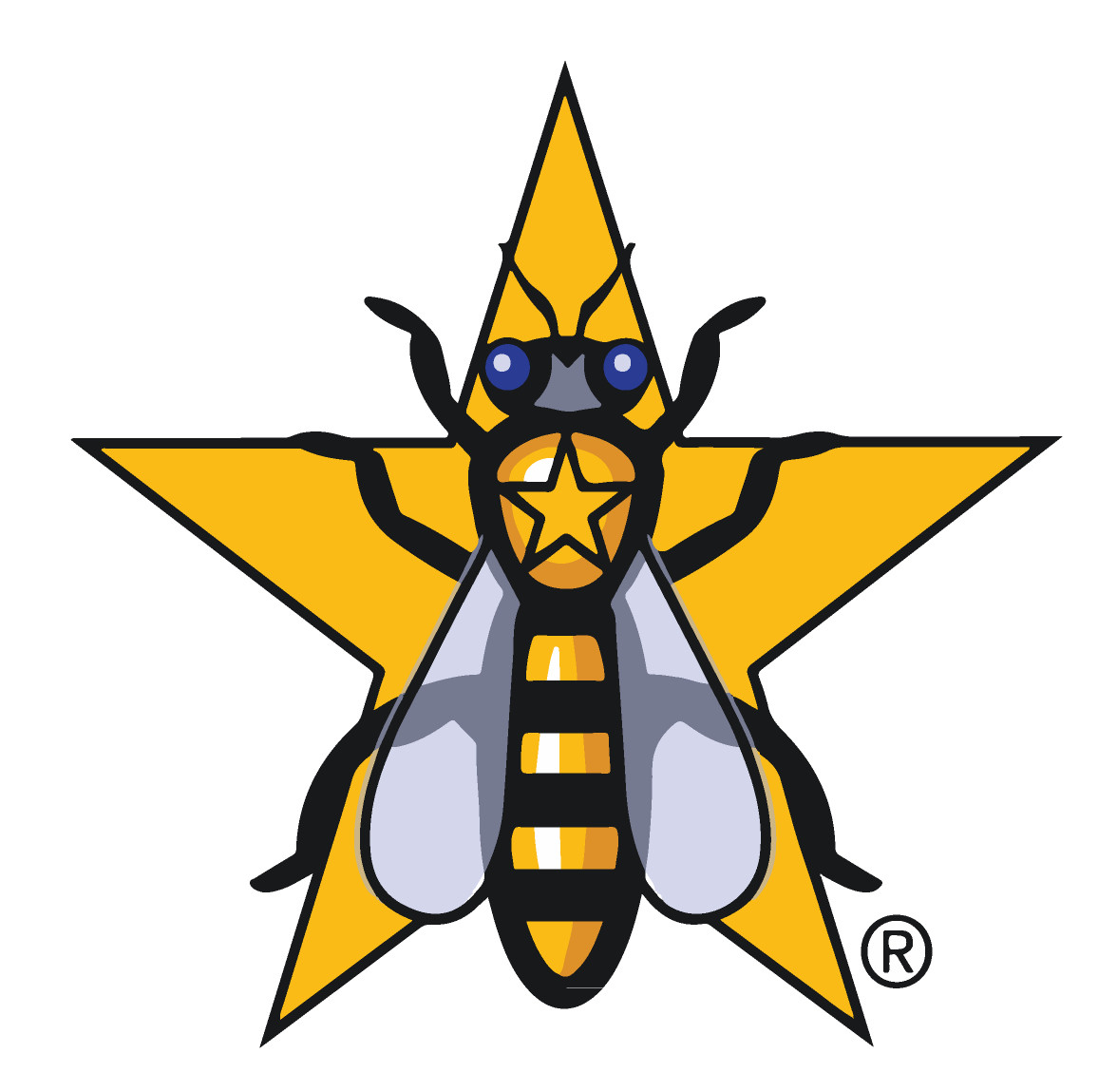 Why is this company called Gold Star Honeybees?