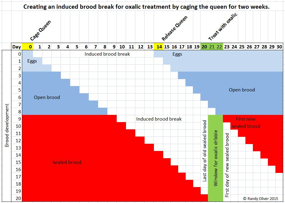brood-break-chart.png