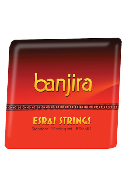 banjira Esraj String Set