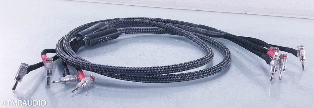 Voodoo Cable Evolution Speaker Cables; 6 ft. Pair