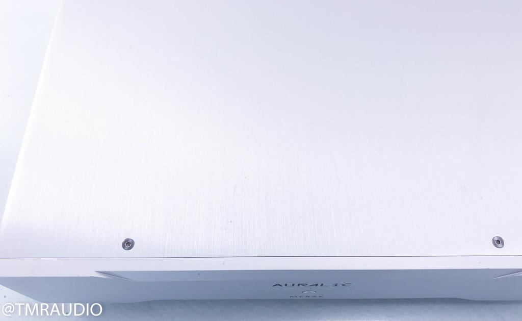 Auralic Merak Mono Power Amplifier; Silver Pair; Warranty (2/3)