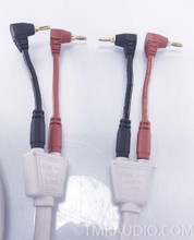 Dunlavy Audio Labs Speaker Cables; 15 ft Pair