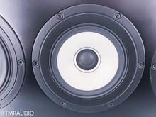 Pioneer TAD S-7EX Center Channel Speaker; Dark Teak