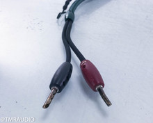 Audioquest CV-4.2 36v Dbs Speaker Cable; Single 1.8m Cable