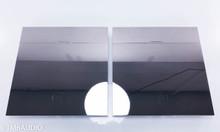 Devialet Expert 440 Mono Power Amplifier; Pair; Infinity Core Upgrade