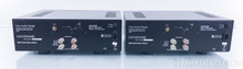 Cary Audio CAD 500 MB Mono Power Amplifiers; Pair; 500MB