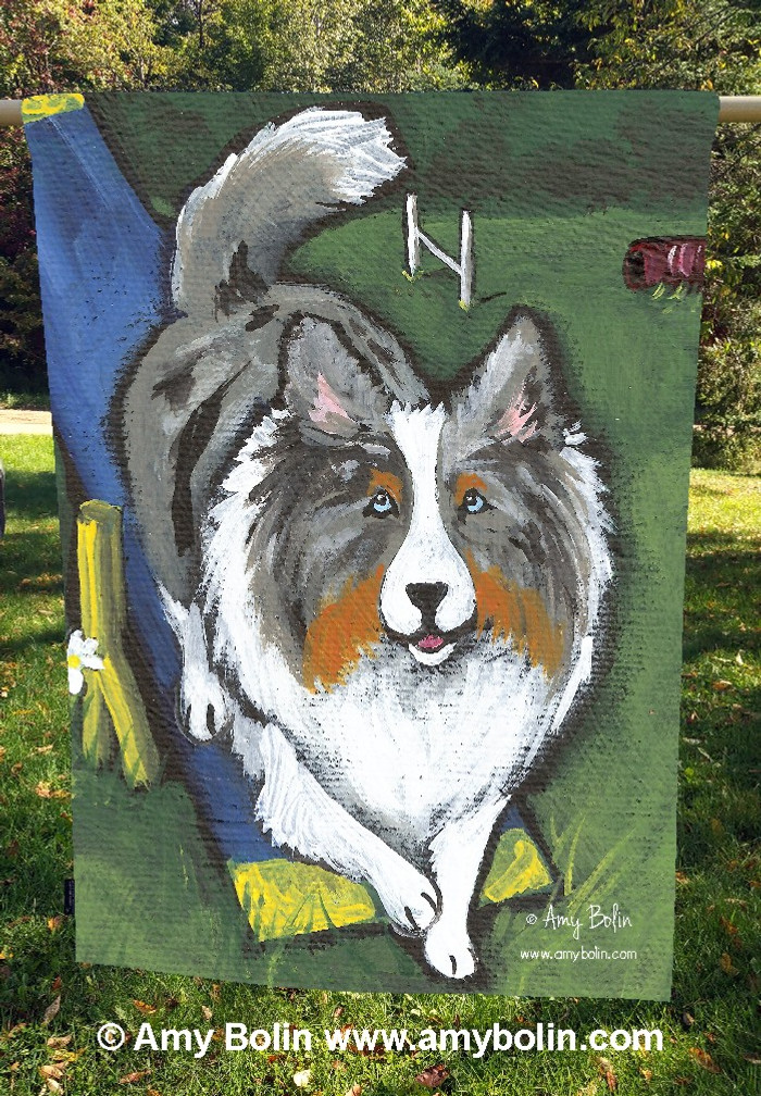 """Agility King"" Blue Merle Sheltie by Amy Bolin · House Flag"