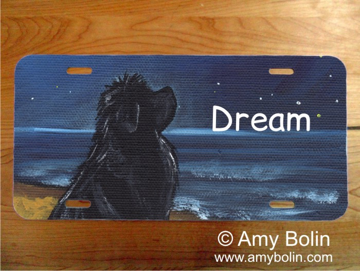 LICENSE PLATE · DREAM · BLACK NEWFOUNDLAND · AMY BOLIN