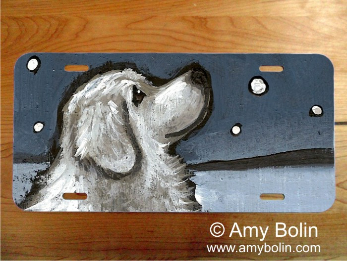 LICENSE PLATE · COUNTING SNOWFLAKES · GREAT PYRENEES · AMY BOLIN