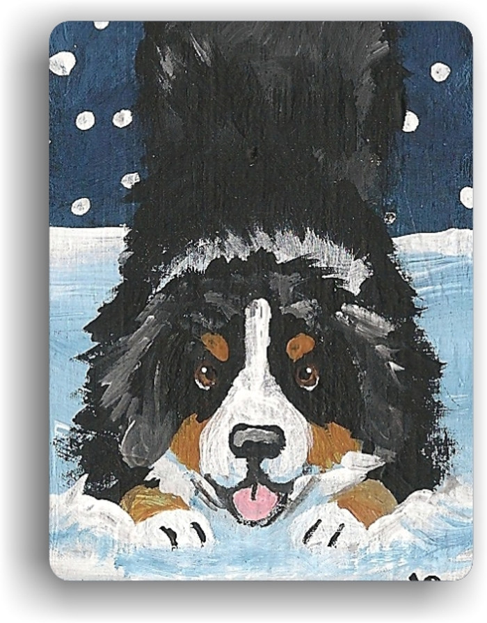 MAGNET · LET'S PLAY  · BERNESE MOUNTAIN DOG · AMY BOLIN