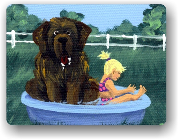 MAGNET · BATHING BEAUTIES  · BROWN  NEWFOUNDLAND · AMY BOLIN