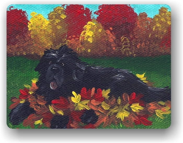MAGNET · HAPPINESS IS A PILE OF LEAVES· BLACK  NEWFOUNDLAND · AMY BOLIN