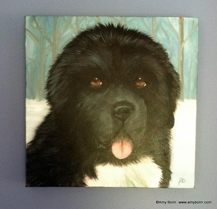 """""""Puppy Eyes"""" Black Newfoundland Dog Original ART Acrylic Painting on Canvas 12"""" square"""