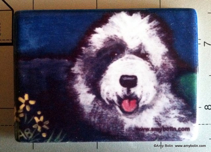 MAGNET · TOBY  · OLD ENGLISH SHEEPDOG  · AMY BOLIN