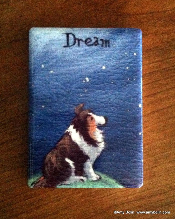 MAGNET · DREAM· SABLE SHELTIE · AMY BOLIN