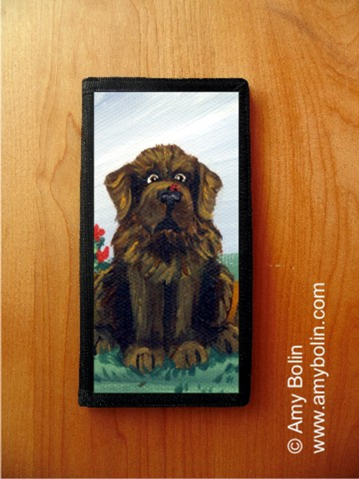 CHECKBOOK COVER · A LITTLE VISITOR · BROWN NEWFOUNDLAND · AMY BOLIN