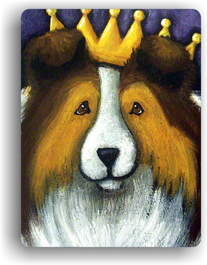 MAGNET · THE QUEEN  · SABLE SHELTIE · AMY BOLIN