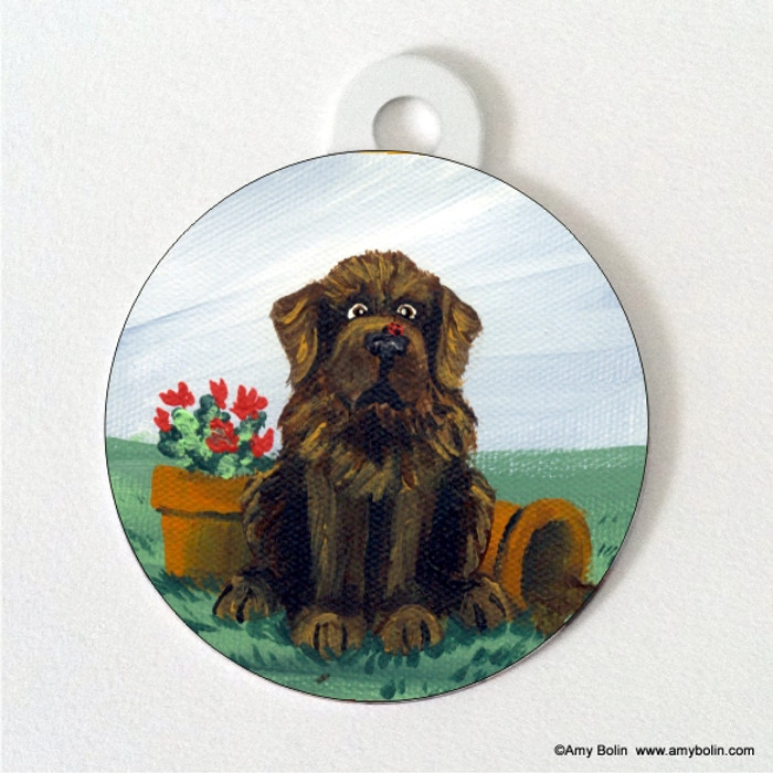 DOUBLE SIDED PET ID TAG · A LITTLE VISITOR · BROWN  NEWFOUNDLAND · AMY BOLIN