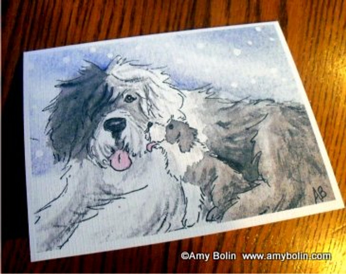 NOTE CARDS · LITTLE KISS · OLD ENGLISH SHEEPDOG · AMY BOLIN