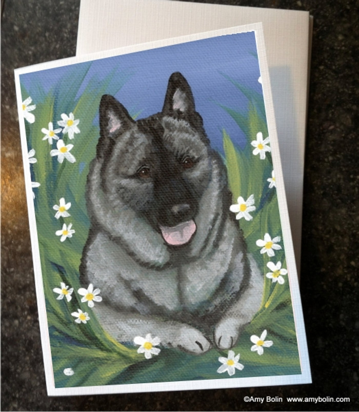 NOTE CARDS · DAISIES 1 · NORWEGIAN ELKHOUND · AMY BOLIN