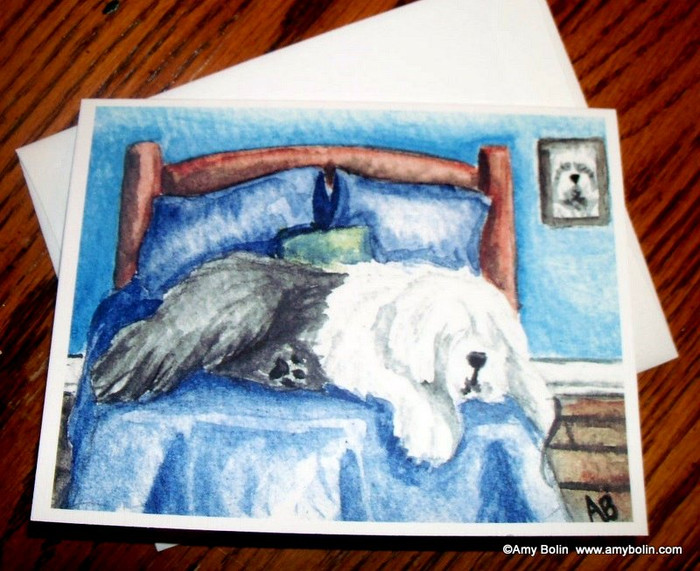 NOTE CARDS · THE KING ON HIS THRONE · OLD ENGLISH SHEEPDOG · AMY BOLIN