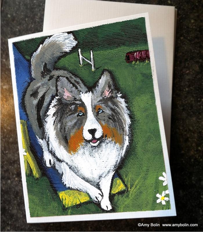 """Agility King"" Blue Merle Shetland Sheepdog Note Cards"