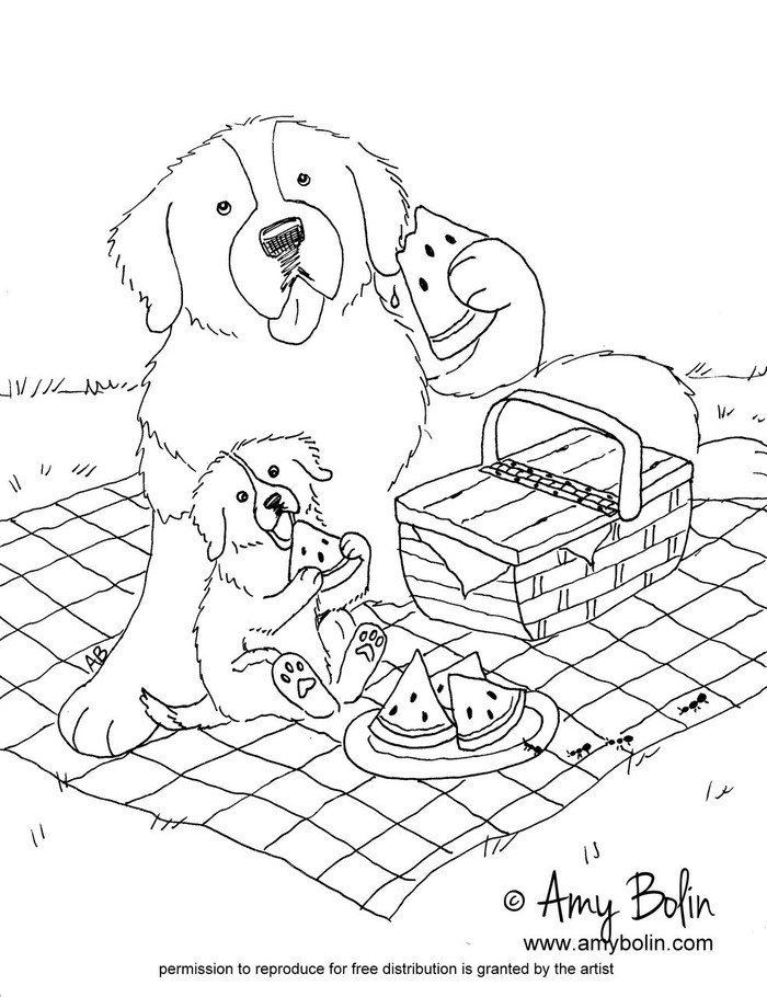 "FREE COLORING SHEET DOWNLOAD · ""The Sweet Taste Of Summer"" · SAINT BERNARD · AMY BOLIN"