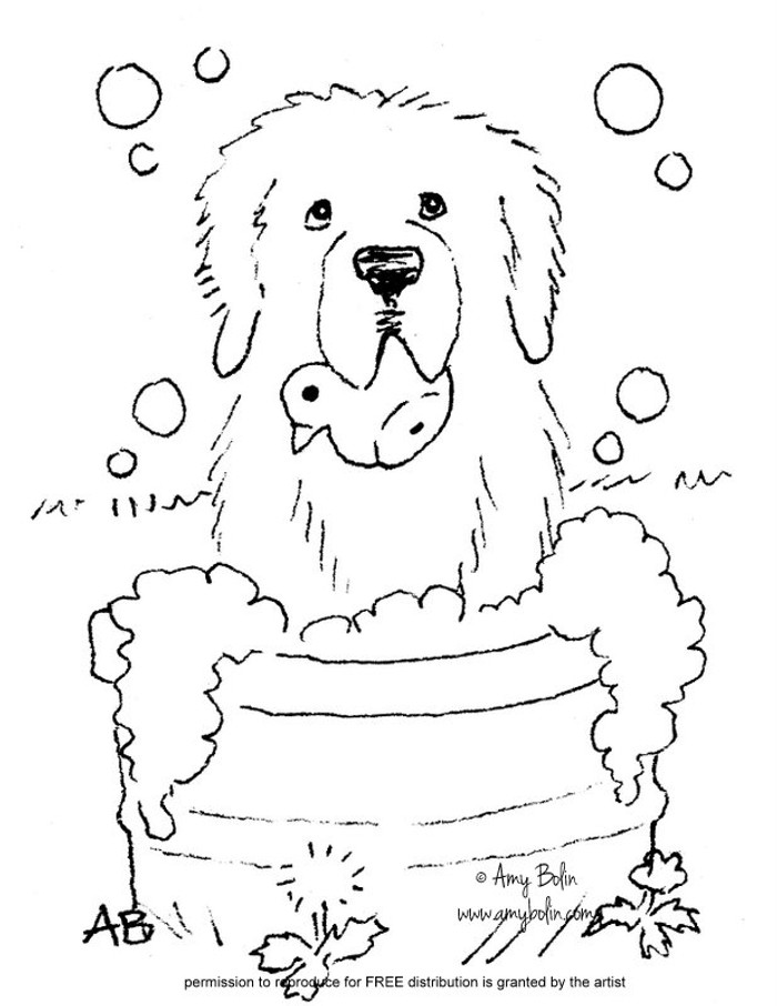"""FREE COLORING SHEET DOWNLOAD · """"Bath Time"""" · NEWFOUNDLAND · AMY BOLIN"""