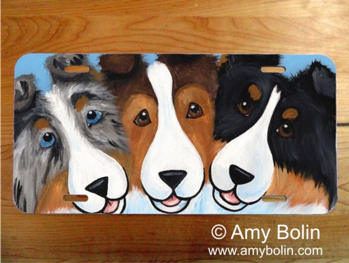 LICENSE PLATE · BFF'S · BLUE MERLE, SABLE, TRI COLOR SHELTIE · AMY BOLIN