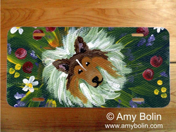 LICENSE PLATE · IN MOM'S FLOWERS AGAIN! · SABLE SHELTIE · AMY BOLIN