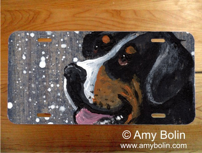 LICENSE PLATE · SWISSY · GREATER SWISS MOUNTAIN DOG · AMY BOLIN