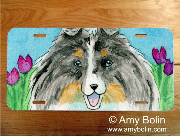 LICENSE PLATE · EASTER SHELTIE · BLUE MERLE SHELTIE · AMY BOLIN