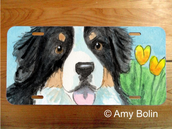 LICENSE PLATE · EASTER BERNIE · BERNESE MOUNTAIN DOG · AMY BOLIN