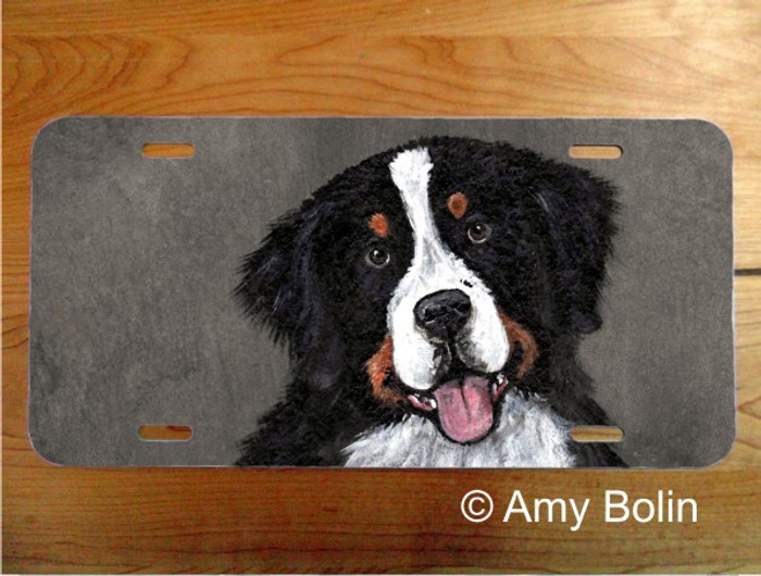 LICENSE PLATE · MERLIN · BERNESE MOUNTAIN DOG · AMY BOLIN