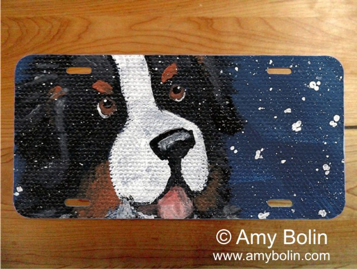 LICENSE PLATE · COUNTING SNOWFLAKES · BERNESE MOUNTAIN DOG · AMY BOLIN