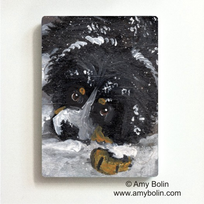 MAGNET · MY FIRST WINTER · BERNESE MOUNTAIN DOG · AMY BOLIN